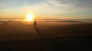 Coucher du soleil sur un paysage de l'Arctique, avec la route de terre battue au premier plan, quelques rares arbres à l'horizon.