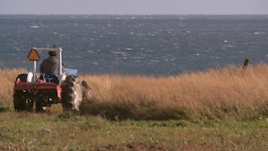 Un agriculteur conduit un tracteur dans un champ qui borde la mer.
