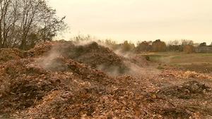 Un énorme tas de feuilles en décomposition qui dégage de la vapeur.