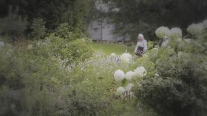 Un parterre de plantes anciennes dans le Village québécois d'Antan.