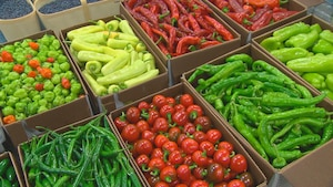 Des boites de différents légumes dans un étalage de marché.