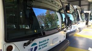 Des autobus de la Société de transport de Lévis
