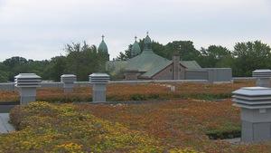 toit avec des fleurs et au loin, le toit d'une église