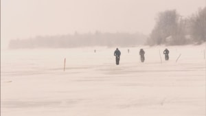 Des cyclistes sur le lac Saint-Jean en plein hiver