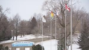 Le campus de Moncton