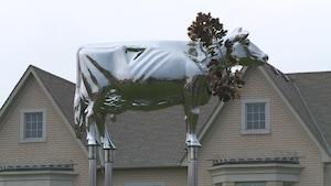 L'oeuvre artistique d'une vache devant des résidences de Markham