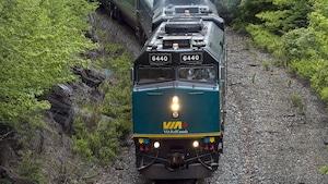 Un train de VIA Rail roule dans la forêt.