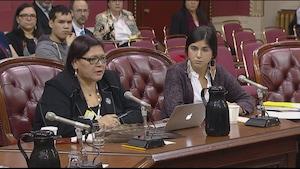 La présidente de Femmes autochtones du Québec, Viviane Michel (à g.), et Cynthia Smith, analyste juridique et politique de l'organisme