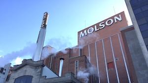 La façade extérieure de la brasserie Molson