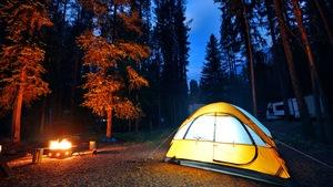 Une tente de camping dans la forêt près d'un feu.