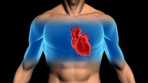 Comment un athlète peut mourir subitement d'un arrêt cardiaque?