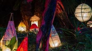 Des lanternes posées dans un jardin qui sont illuminées dans la nuit.