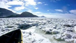 Projet de Dany Dumont et son équipe de l'UQAR sur l'impact des vagues sur la banquise : canot sur l'eau en hiver, dans les glaces