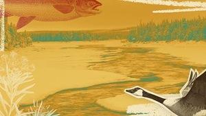 Projet Innu, une langue, un peuple, illustration d'un paysage avec une outarde et poisson