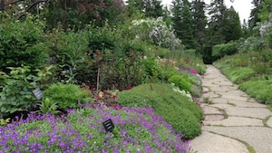 Vue partielle du Jardin avec sentier.