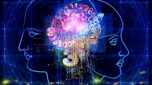 Les différences biologiques entre hommes et femmes se constatent notamment dans l'activité neuronale.