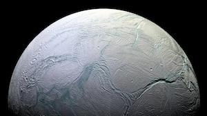 Vue d'Encelade, une petite lune de la planète Saturne