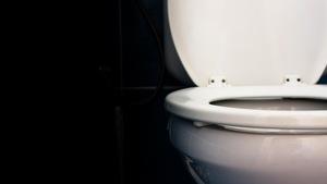 La cuvette d'une toilette est levée.