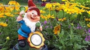 Les nains de jardin décorent un aménagement floral