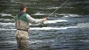Un pêcheur dans une rivière à saumons sur la Côte-Nord