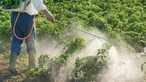 L'épandage de pesticides