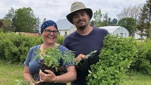 Mélanie Simard et Michel Perrée, copropriétaires des Potagers Les Rangs Fous, posent avec des pousses vertes dans les mains