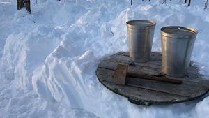 Deux chaudières pour l'eau d'érable et un maillet de bois déposés sur une table dans l'érablière