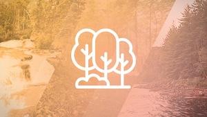 Un pictogramme de forêt sur un arrière-plan de photos.