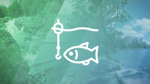 Un pictogramme de poison sur un arrière-plan de photos.