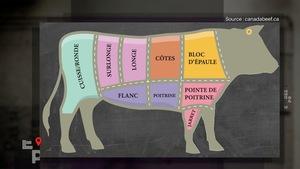 Les coupes de viande d'un boeuf.