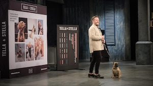 Alexandre Hébert présente son entreprise Tella & Stella aux dragons.