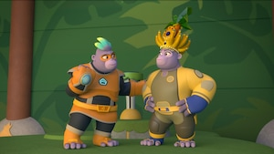 Les championnats de la Jungle