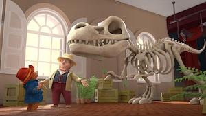Paddington et l'os
