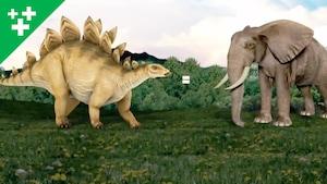 Faits fascinants sur les dinosaures