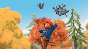 Paddington et l'automne