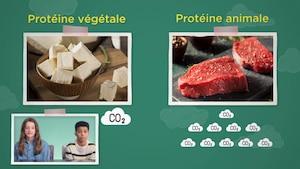 Selon toi : Viande pas viande