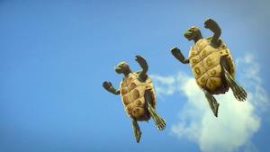 Des animaux dans les airs