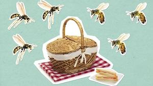 Comment la guêpe et l'abeille piquent-elles?