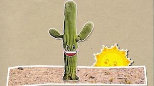 Pourquoi les cactus ont-ils des épines?