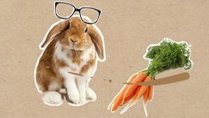Le fait de manger des carottes est-il vraiment bon pour les yeux?