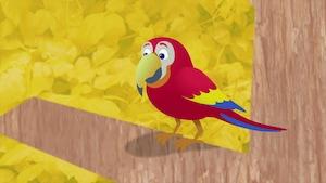 L'étrange mystère du perroquet