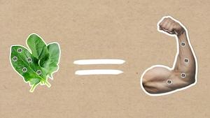 Manger des épinards nous rend-il plus forts?