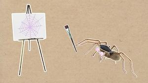 Comment les araignées tissent-elles leur toile?