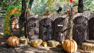 Dans un boisée, des décorations d'Halloween : chat noir, citrouille, bottes de foin et visages effrayants sculptés dans des troncs d'arbres.
