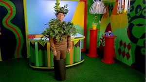 Cachette plante camouflage