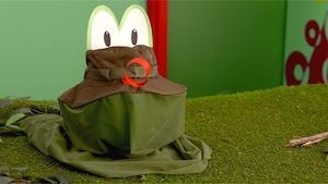 Le chapeau grenouille-attrape-moustiques