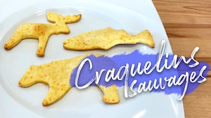 B-TV:Craquelins sauvages