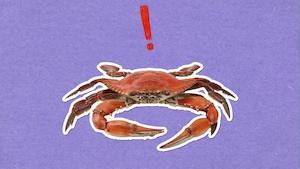 Pourquoi les crabes marchent-ils de côté?