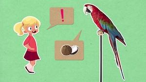 Comment les perroquets arrivent-ils à parler?
