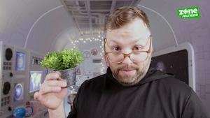 La légalisation du cannabis